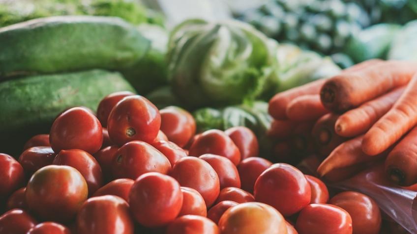 Сельское хозяйство Ленобласти поддержит кредит в235 млн. руб.