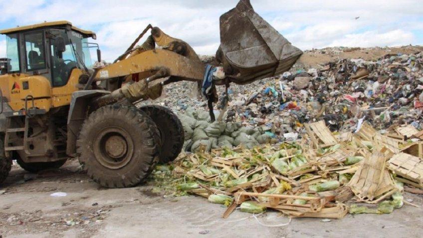 Шесть тон «санкционки» уничтожено в северной столице