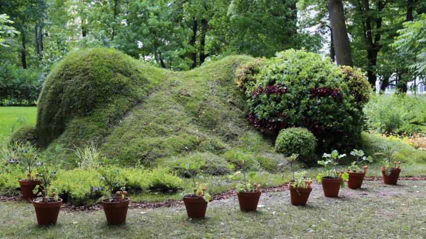 Сегодня вПетербурге стартует международный фестиваль «Императорские сады России»
