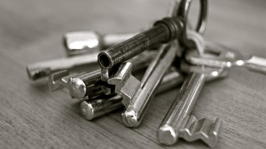 ВПетербурге мошенник после ограбления квартиры столкнулся вдверях схозяйкой