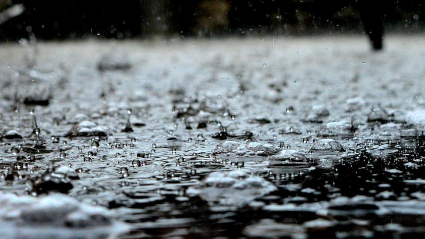 МЧС Петербурга предупредило одождях иветре на11ноября