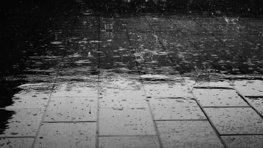 Вначале рабочей недели наПетербург обрушится непогода— МЧС