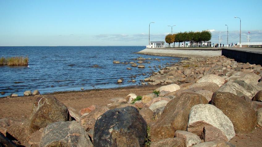 Вблизи Финского залива обнаружили незаконную свалку площадью 4 га