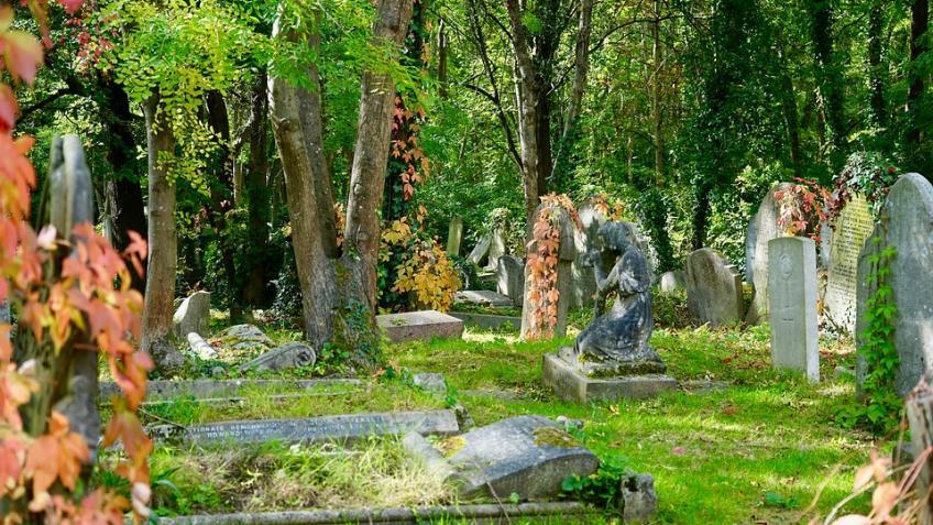 ВПетербурге милиция ищет вандалов, разгромивших кладбище