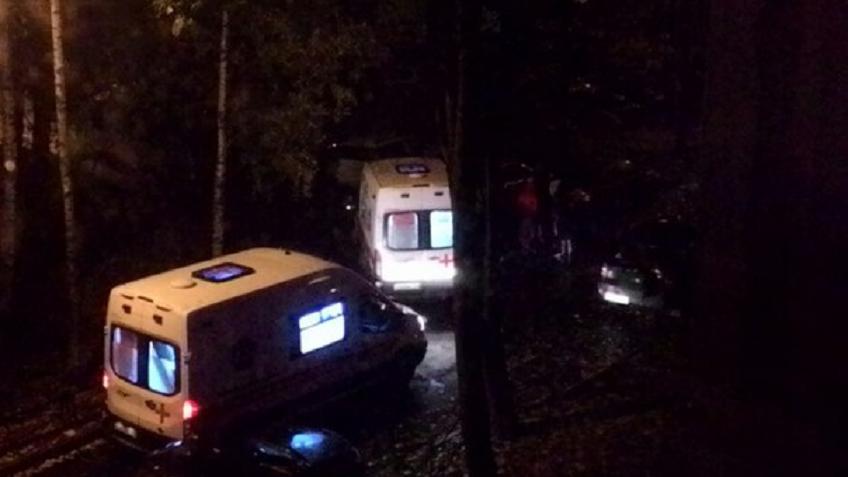 ВПетербурге шофёр БМВ пытался разнять драку наездом иубил друга