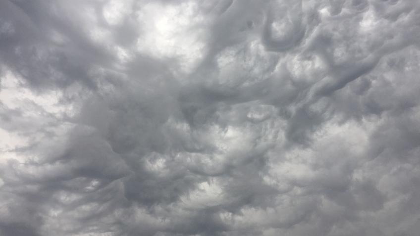 ВПетербурге всреду будет идти дождь иподнимется штормовой ветер