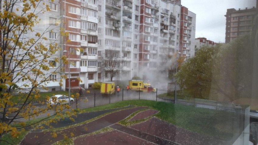 Прорыв трубы с горячей водой на Васильевском острове попал на фото