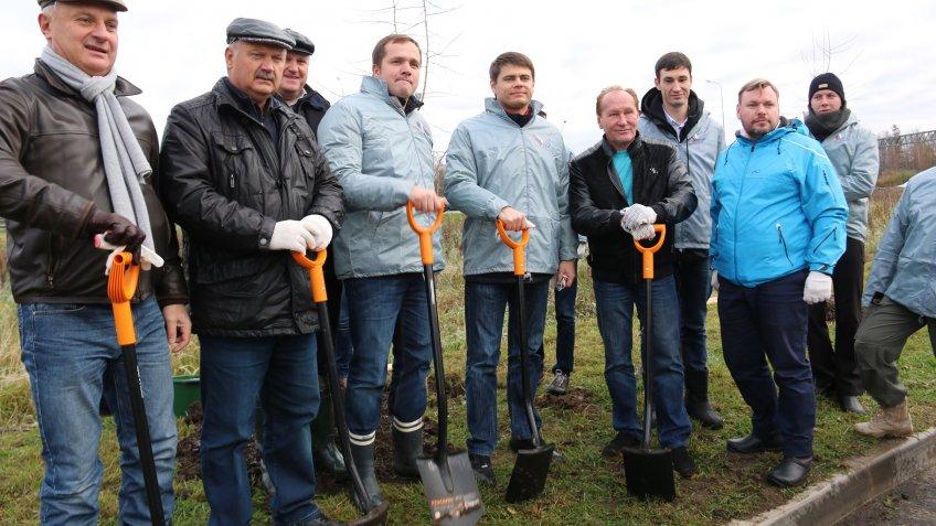 Набывшем мусорном полигоне «Новоселки» вПетербурге высадили 500 деревьев