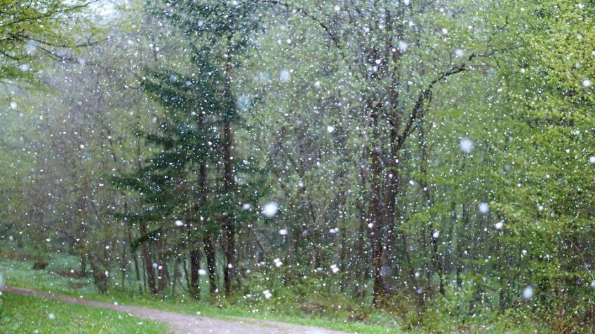 ВПетербурге 7ноября будет тепло ибез осадков
