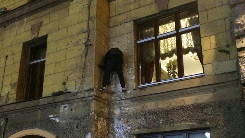 Кота Елисея наСадовой вПетербурге опять ограбили