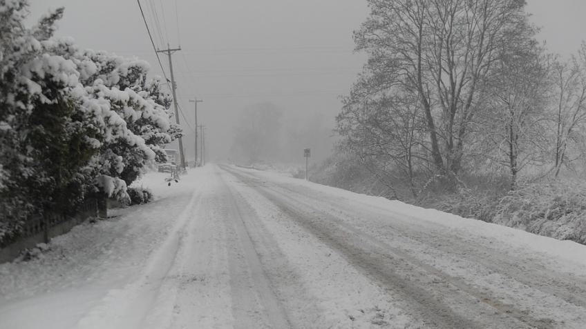 Последний понедельник нынешнего 2017г вПетербурге будет холодным иснежным