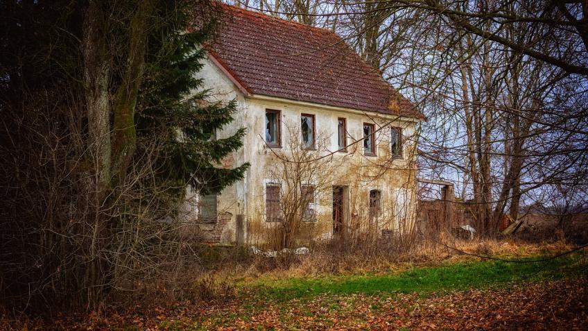 ВЛенинградской области найдено изуродованное тело 55-летнего садовода