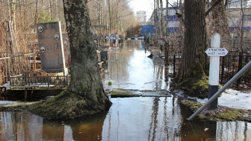 ВПетербурге затопило могилы наСерафимовском кладбище