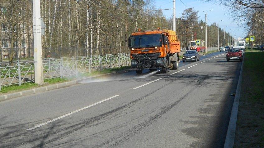 Ссамого начала мая сулиц Петербурга вывезли неменее 700 тонн мусора