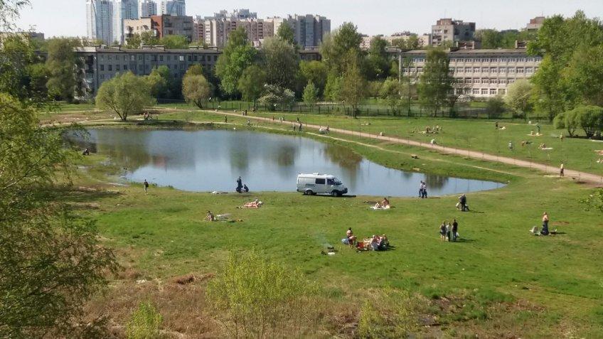 Гражданин Санкт-Петербурга потонул впруду вКупчино